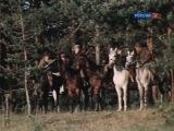 1975-76 - Г.М.Марков